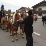 Besuch aus Castagnaro zu Leonhardi